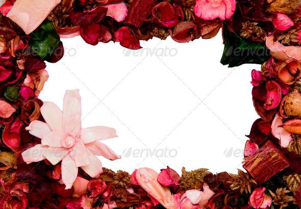 PhotoDune framework of petals 4236510