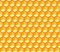 Seamless Hexagonal Cells Vector Texture - PhotoDune Item for Sale