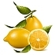 Fresh Lemons with Leaves. - GraphicRiver Item for Sale