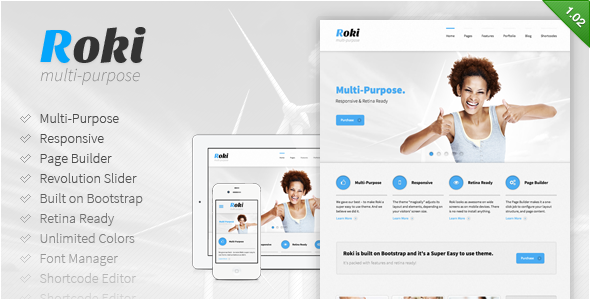Roki – Multi-Purpose Responsive Theme