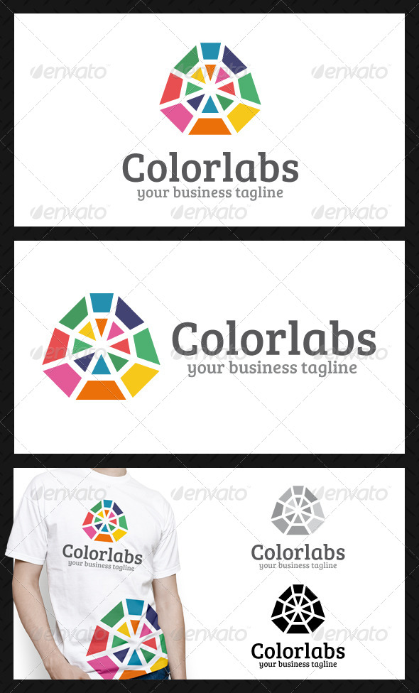 GraphicRiver Color Labs Logo Template 4253125