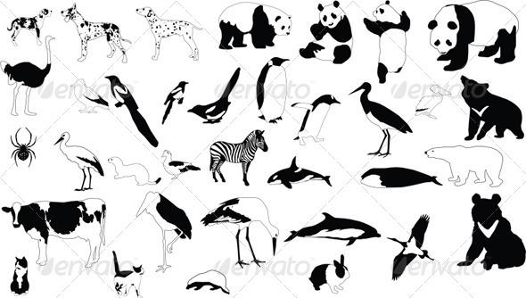 GraphicRiver Black and White Animals 4253908