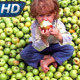 Apple Boy - VideoHive Item for Sale