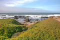 Pescadero State Beach - PhotoDune Item for Sale