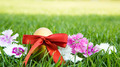 Easter eggs on green grass with flower - PhotoDune Item for Sale