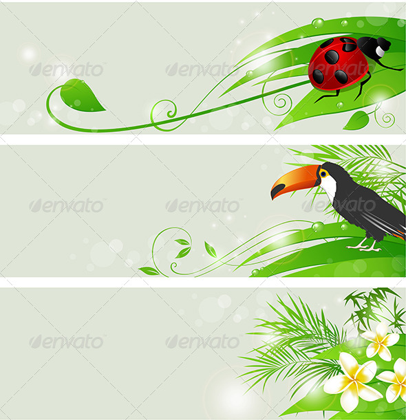 GraphicRiver Summer Green Banners 4262262