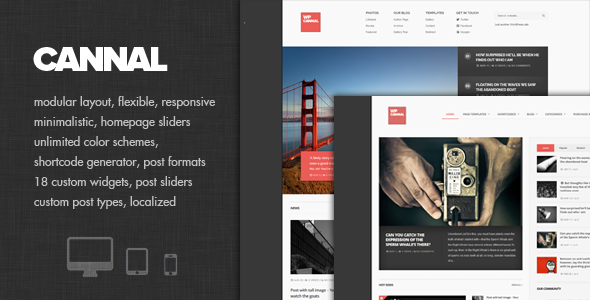 Cannal - Powerful Magazine Theme