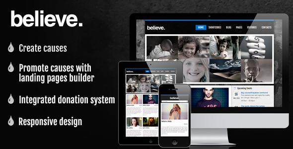 ThemeForest Fundraising Charity Premium Wordpress Theme 4238530