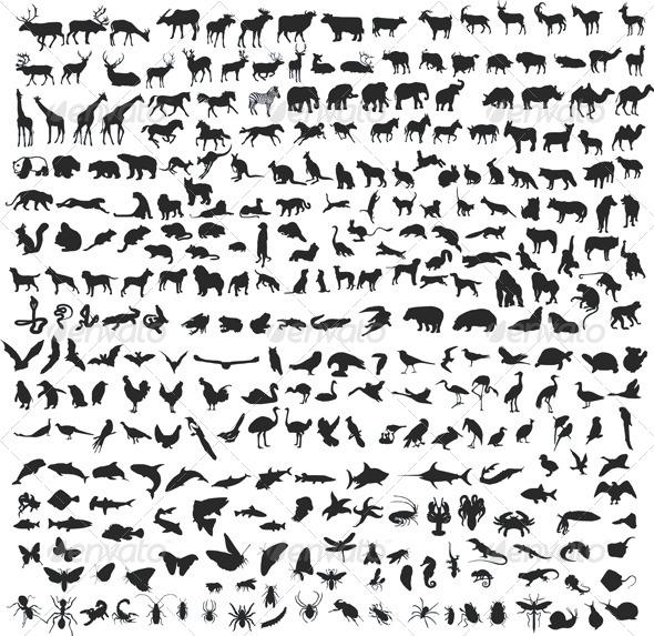 GraphicRiver 300 Animals 4268776