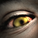 The Zombie World - VideoHive Item for Sale
