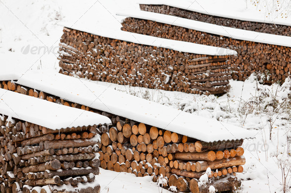 Renewable heat source firewood stacked in winter - Stock Photo - Images