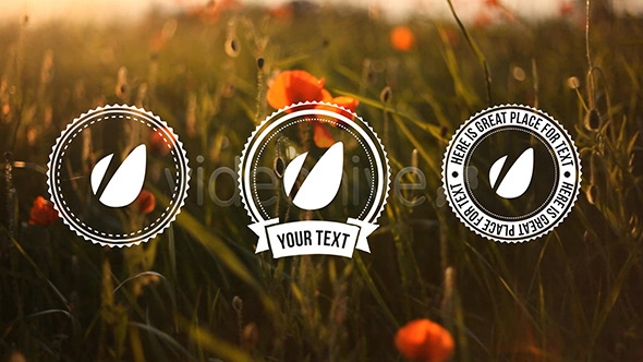 Light Vintage Lower Thirds Pack