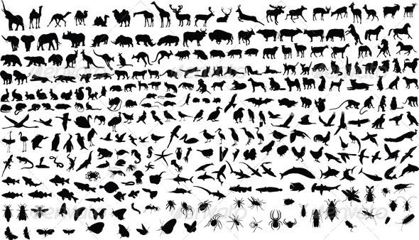 GraphicRiver Animals 4291657