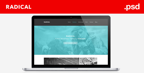 ThemeForest Radical Single Page PSD Template 4291865