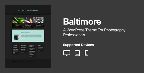 Baltimore - WordPress Photography Theme