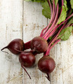 Beets - PhotoDune Item for Sale