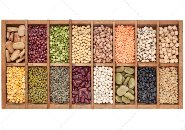 set of 16 legume samples - Stock Photo - Images