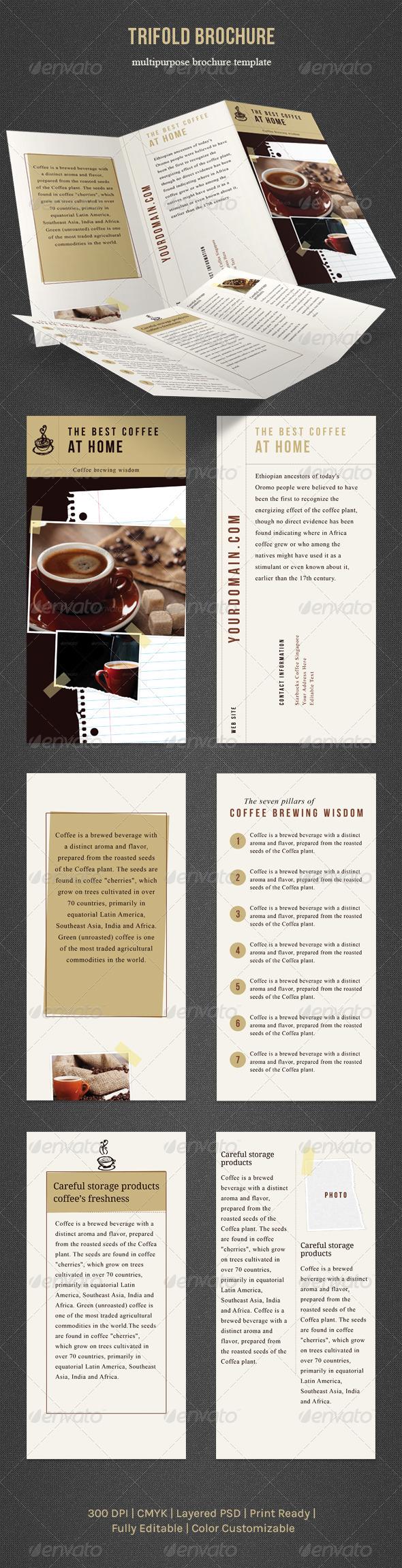 GraphicRiver Trifold Brochure 4139850