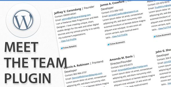 CodeCanyon Meet The Team Plugin 4126778