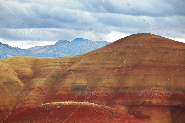 Colorfull hill - Stock Photo - Images