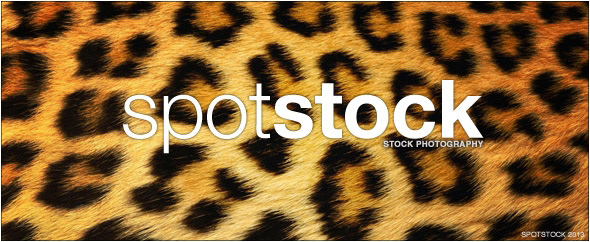 Spot stock photography(2)