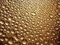 Water Drops - PhotoDune Item for Sale