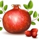 Ripe Pomegranate with Leaves - GraphicRiver Item for Sale