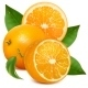 Fresh Ripe Oranges with Leaves - GraphicRiver Item for Sale