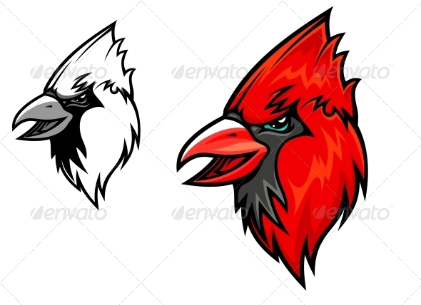 Cardinal Birds - Animals Characters
