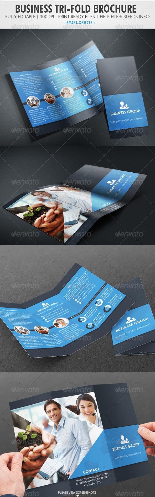 GraphicRiver Business Tri-fold Brochure 4188008