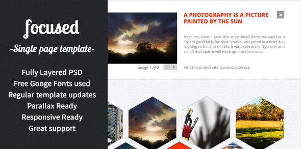 ThemeForest focused OnePage MultiPurpose PSD Template 4337767