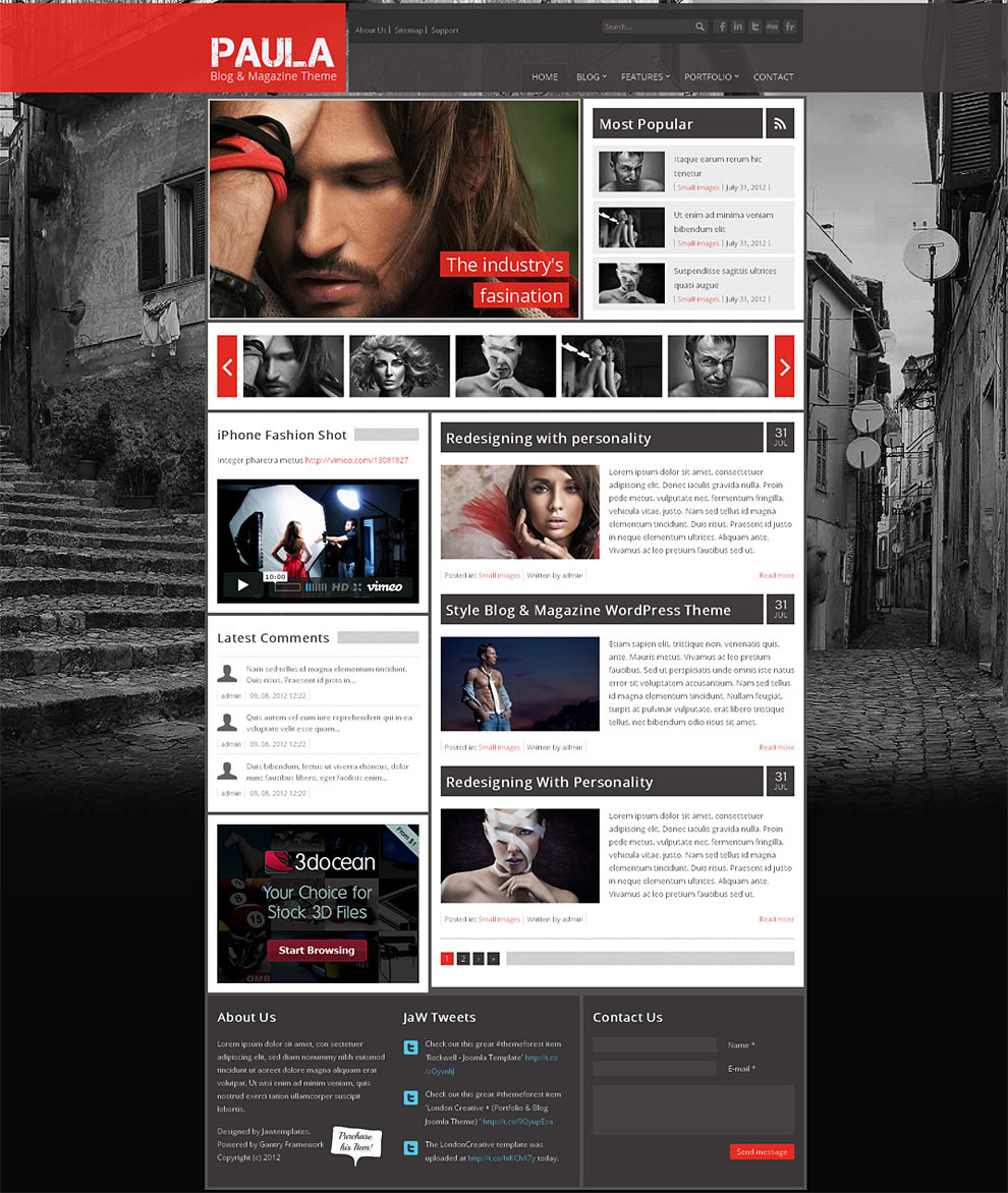 http://1.s3.envato.com/files/51818209/Theme_Preview/2_homepage-red.jpg