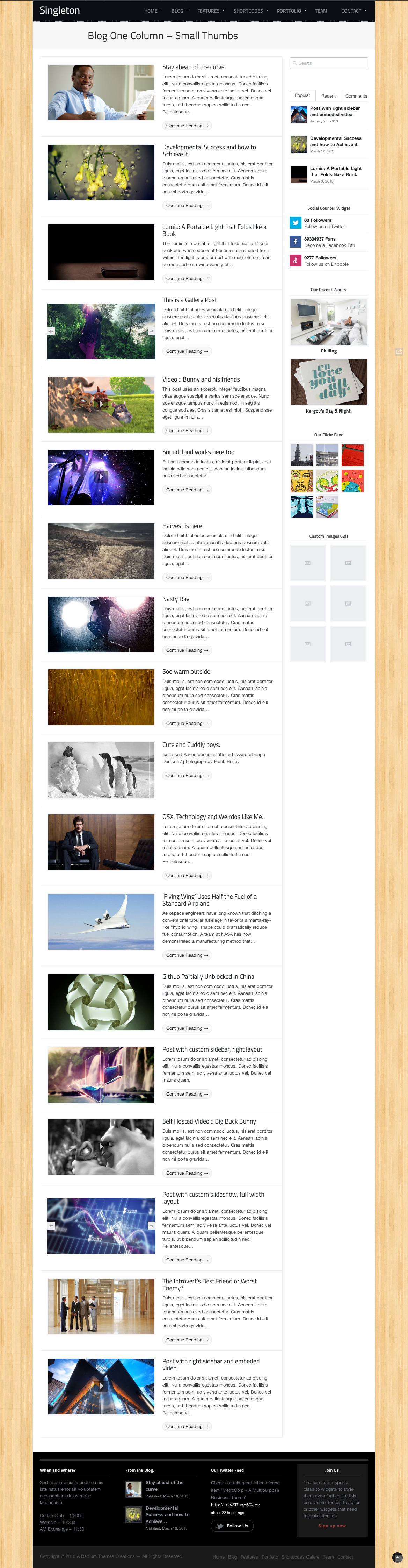 Singleton - A Responsive Multipurpose WP Theme