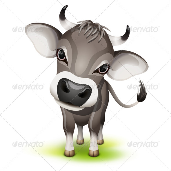 GraphicRiver Little Swiss Cow 4341696