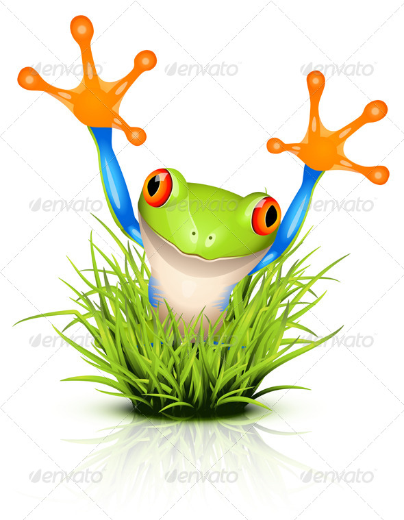 Tree Frog on Grass - Animals Characters