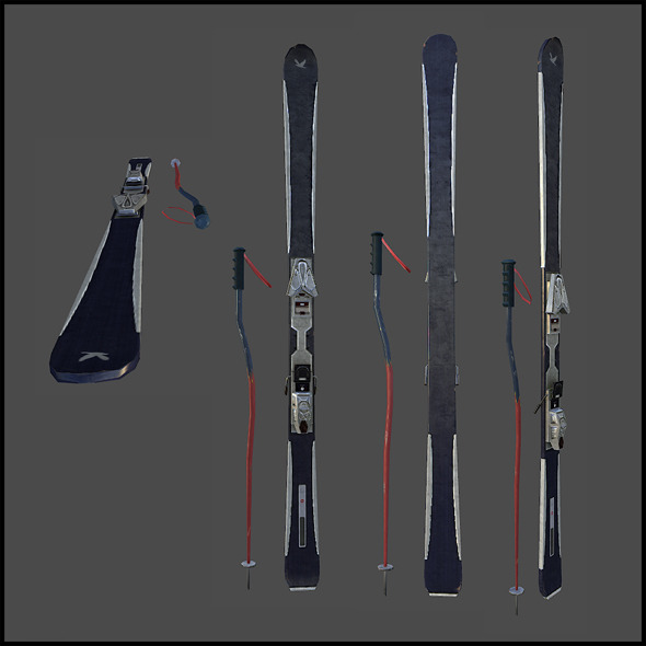 Ski and pole - 3DOcean Item for Sale
