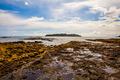 Lost Rocky Island - PhotoDune Item for Sale