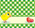 checkered background with chicken and easter eggs - PhotoDune Item for Sale