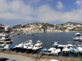 Island Port in Ponza Italy - PhotoDune Item for Sale