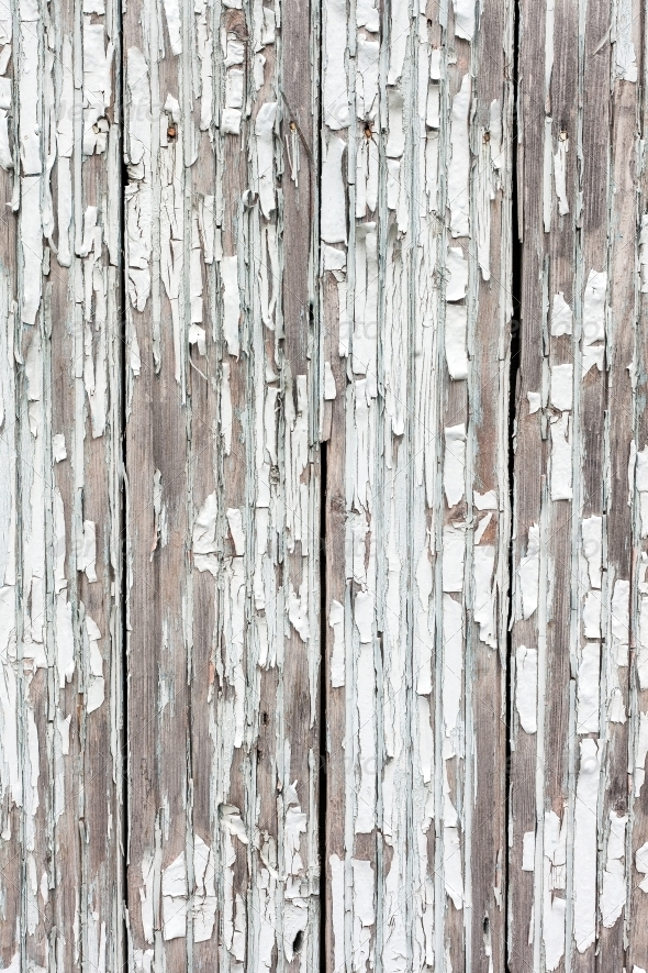 GraphicRiver grungy white background of natural wood 4353769