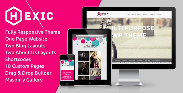 ThemeForest Hexic Multipurpose One Page Responsive WP Theme 4324033