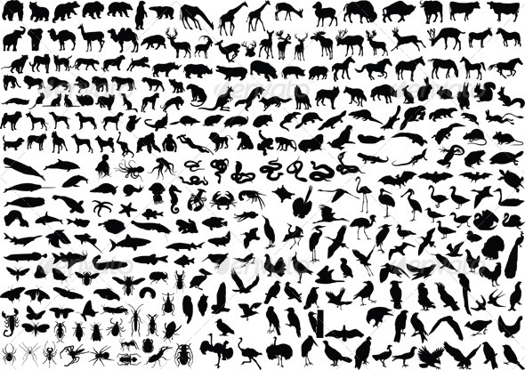 GraphicRiver 300 Animal Silhouettes 4365483