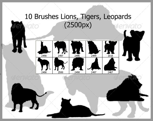 10 Brushes Lions Tigers Leopards (2500px) - Brushes Photoshop