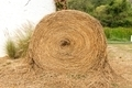 Large rounded hay stack on green grass - PhotoDune Item for Sale