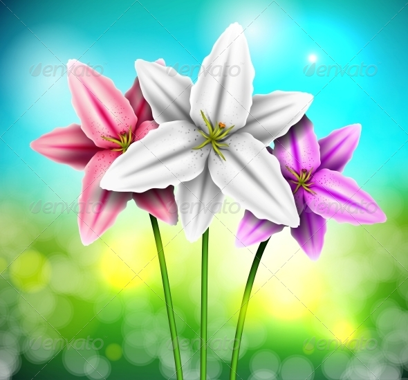 GraphicRiver Natural Background with Lilies 4367873