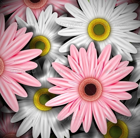 GraphicRiver Background with Gerberas 4367888