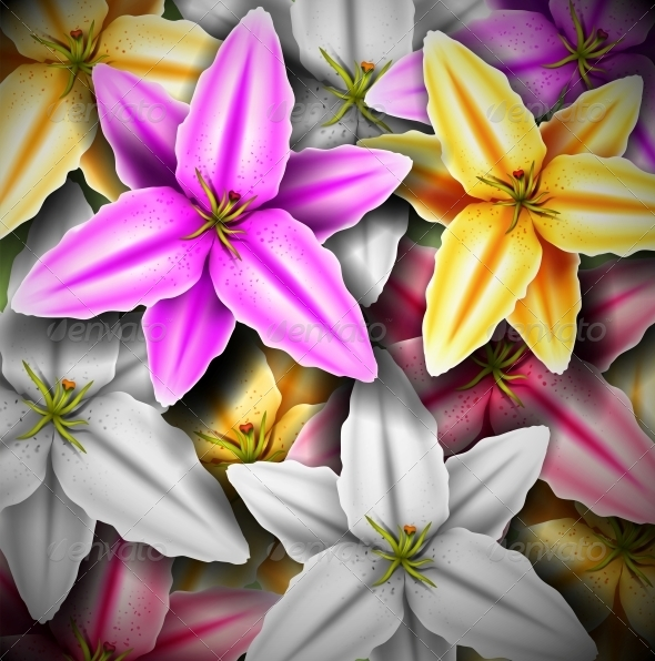 GraphicRiver Background with Colorful Lilies 4367894