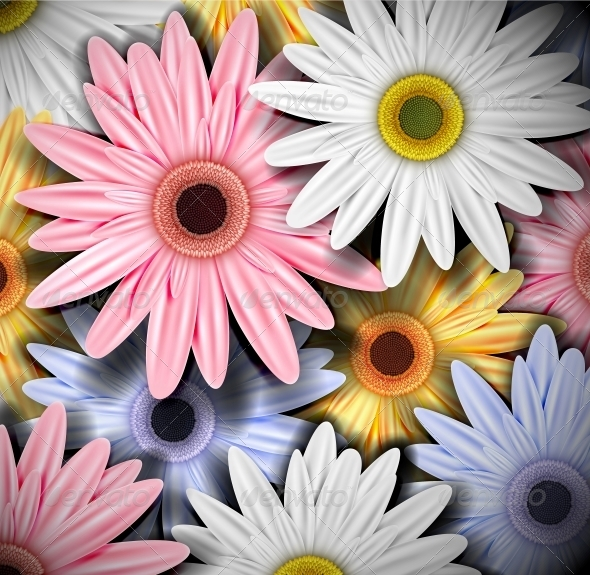 GraphicRiver Background with Colorful Gerberas 4367908