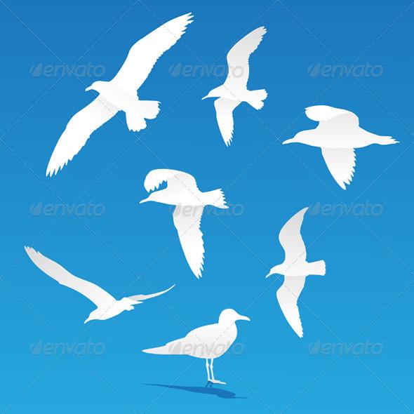 GraphicRiver Seagull Silhouettes 4370099