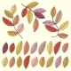 Autumn Leaves and Tree Branches Set. - GraphicRiver Item for Sale